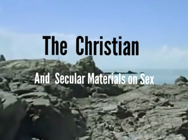 Why Christians should be wary of secular materials on sex.