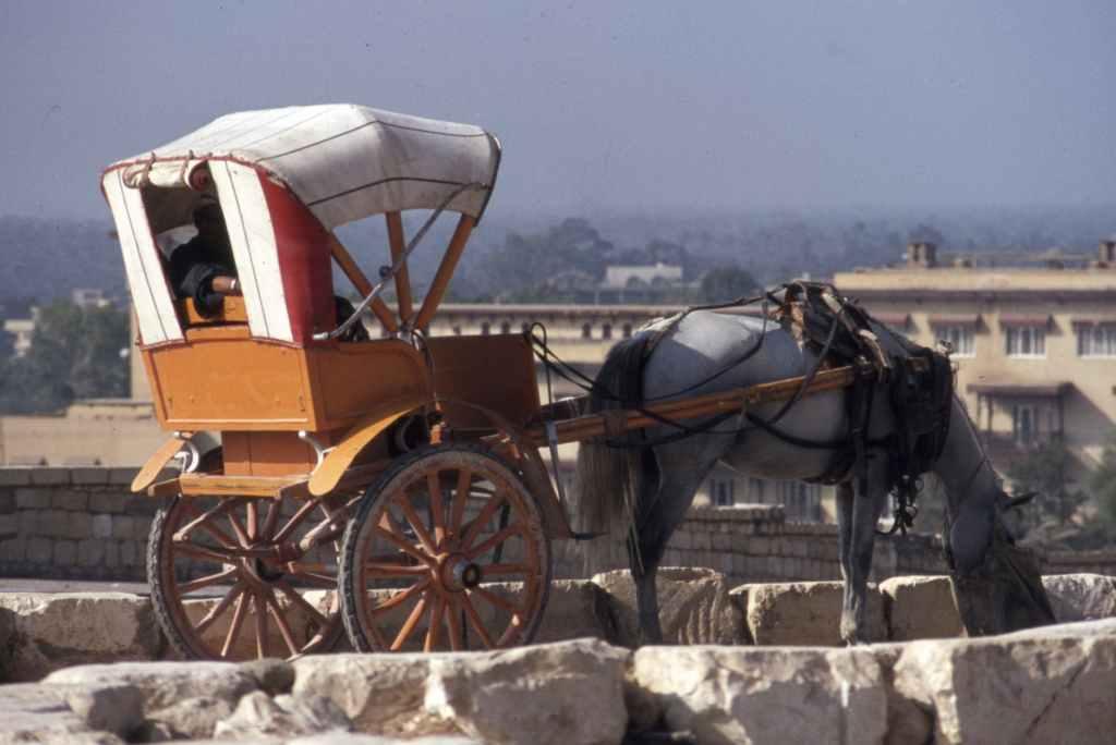 Enoch was taken away in a chariot.